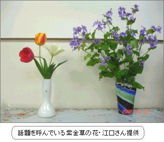 Img_20080412_01