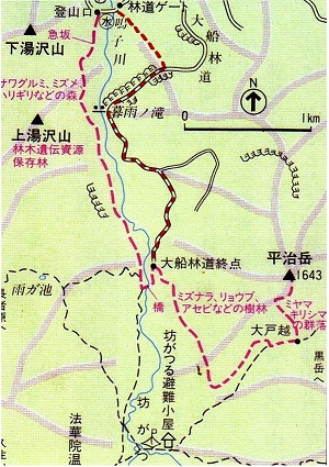 ゆっくり登ろう会 第82回例会 大船林道 登山