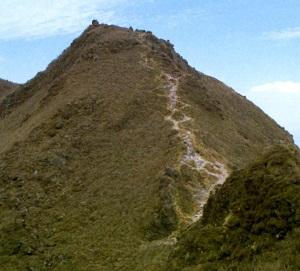 ゆっくり登ろう会 第83回例会 由布岳 1,583m 登山