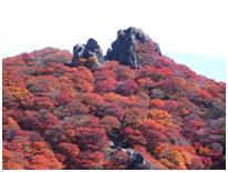 ゆっくり登ろう会 第108回例会  皿倉山(622m) 登山 12月13日(日)