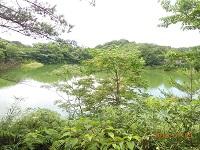 自然を楽しむ会 第154回例会 「北九州市瀬板の森公園」の散策 9月4日(日)